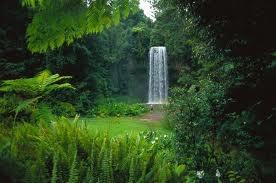 Millaa Millaa Falls - Ceremony Site