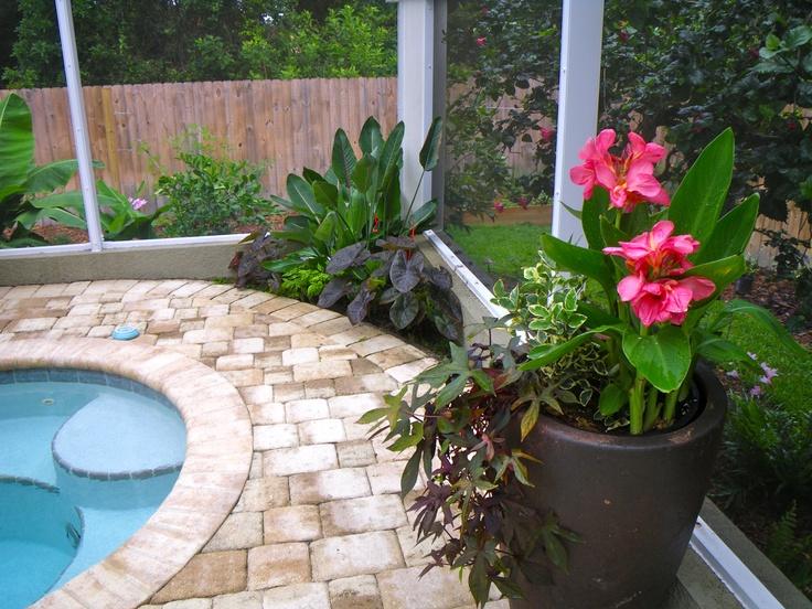 20 best Tropical Poolside Landscaping images on Pinterest | 3/4 beds ...