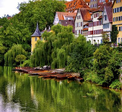 Elegant visitheworld Reflections on the Neckar river in T bingen Germany by Dan Fi