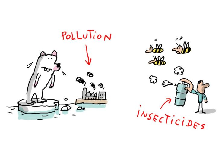 Aujourd'hui, c'est la Journée mondiale des espèces menacées. 1jour1actu t'explique pourquoi certaines espèces risquent de disparaître.