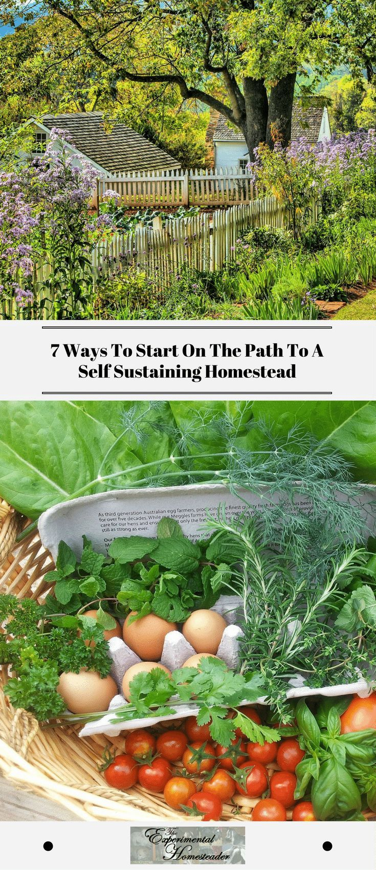 7 Ways To Start On The Path To A Self Sustaining Homestead
