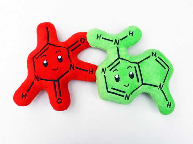 "Nerdy plush Nucleotides (building blocks of DNA) that ""hydrogen bond"" with each other."