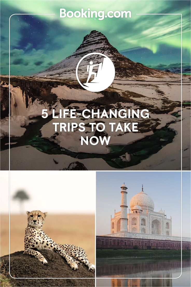 Start living your bucket list with Booking.com, from diving in tropical seas to jungle adventures, a luxury safari or an evening under the northern lights. Tick off the Taj Mahal and Table Mountain, there's no need to stick to just one trip of a lifetime.