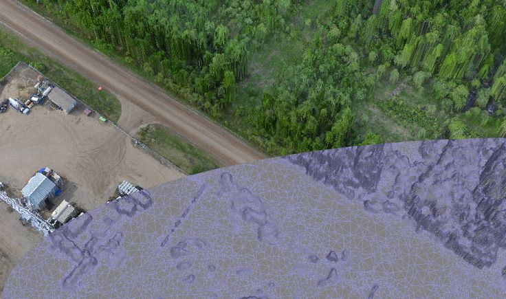Composite picture showing wireframe Digital Surface Map and RGB image overlay