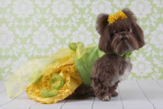 Lemon & Lime Custom Party Dog Dress by JustForBella on Etsy, $169.00