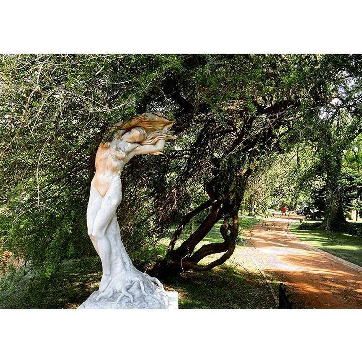 Una de las esculturas más hermosas del #jardinbotánico 😍 . . #art#sculpture#southamerica#travel#garden#nature#woman#artist#photo#picoftheday#instatravel#instanature#trees#tree#arg#bsas#baires#argentina#tourism