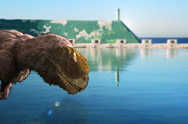 Don't miss the Tyrannosaurs Meet the Family, Summer school holidays program at Newcastle Museum.
