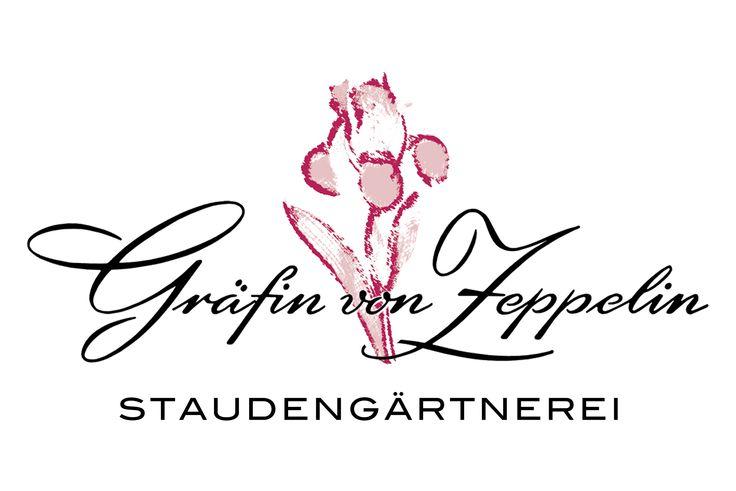 Staudengärtnerei Gräfin von Zeppelin - zur Startseite wechseln