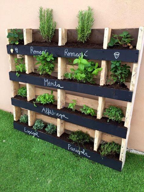 Jardin vertical palette – des conseils pour réussir l. a. tradition «dans l'air»