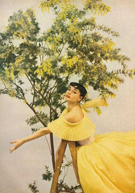 Audrey Hepburn modeling in Harpers Bazaar, 1950s. by Richard Avedon
