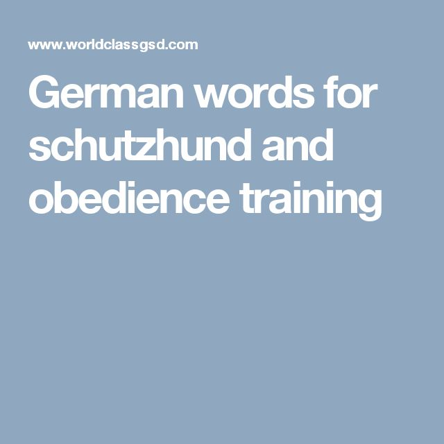 German words for schutzhund and obedience training
