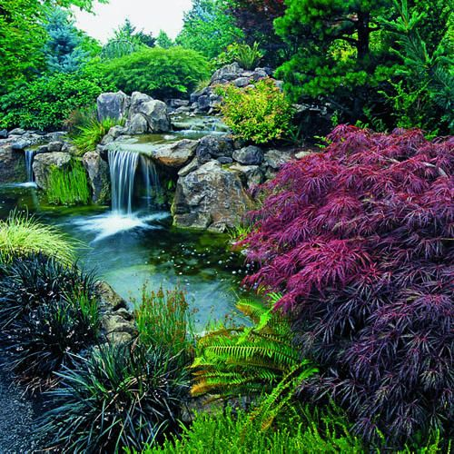 Landscaping Ponds And Waterfalls: 915 Best Backyard Waterfalls And Streams Images On