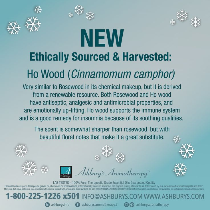 NEW Ethically Sourced & Harvested:  Ho Wood (Cinnamomum camphor)  Very similar to Rosewood in its chemical makeup, but it is derived from a renewable resource. Both Rosewood and Ho wood have antiseptic, analgesic and antimicrobial properties, and are emotionally up-lifting. Ho wood supports the immune system and is a good remedy for insomnia because of its soothing qualities.  The scent is somewhat sharper than rosewood, but with beautiful floral notes. #ashburysaromatherapy