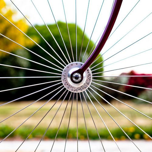 Balance: Radial (The spokes of this bicycle [I think] have radial balance, the center being their connection.)