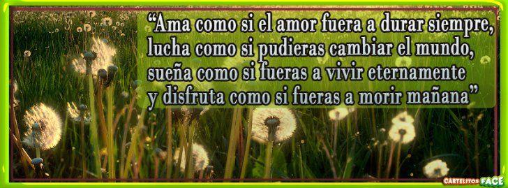 #Ama como si el amor fuera a durar siempre - Portadas para Facebook
