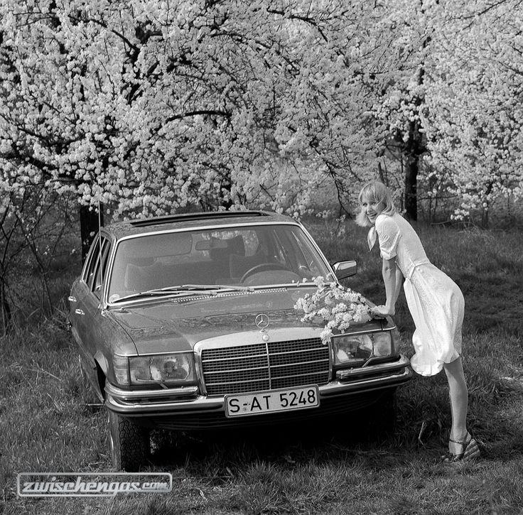 Die Langversion des Mercedes-Benz 450 SEL (1972) schnuppert Frühlungsluft © Daimler AG #MercedesBenz450SEL #450SEL #MercedesBenz #1972 #zwischengas #classiccar #classiccars #oldtimer #oldtimers #auto #car #cars #vintage #retro #classic #fahrzeug