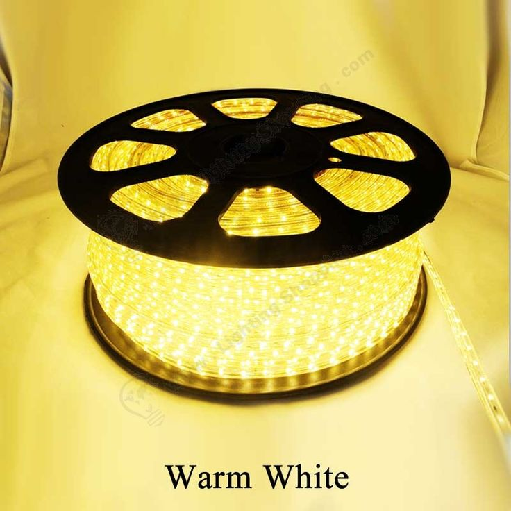 Hot item for holiday decoration >>> 5 Meter/Roll (197Inch), 110V, 60Led/Meter ,Waterproof , 3528 LED Rope http://www.lightingshopping.com/110v-led-rope-60led-meter-waterproof-5-meter-roll-197inch-3528-led-rope-light.html