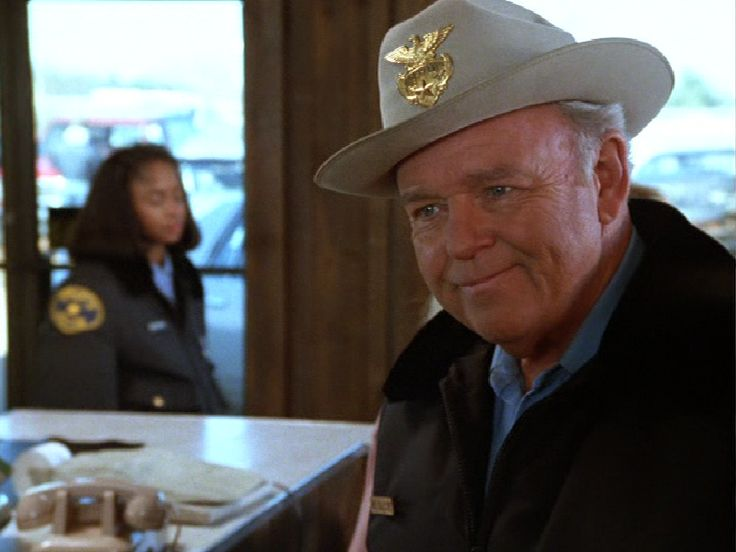 bill gillespie in the heat of the night Where are they now you are here:  the faith-based film co-stars fellow in the heat of the night alum alan autry,  chief/sheriff william o bill gillespie.