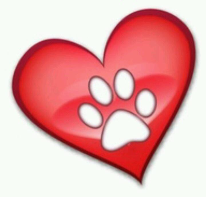 55 best images about Dog TATOO Ideas on Pinterest | Dog ...