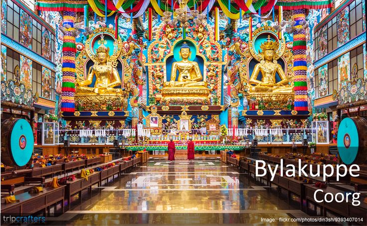 #Bylakuppe, a town located near Mysore in Karnataka, has the largest Tibetan settlement outside Tibet! It has several monasteries and among them Tashi Lhumpo monastery (the seat of Panchen Lama), is the most prominent. The imposing gold-coated statues reflect the rich cultural heritage of the Tibetans.  #Mysore | #India