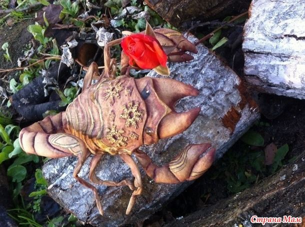 . Знак Зодиака-Скорпион