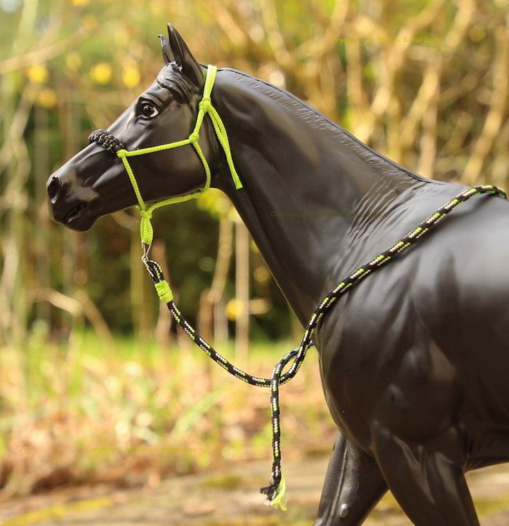 horse rope halter instructions