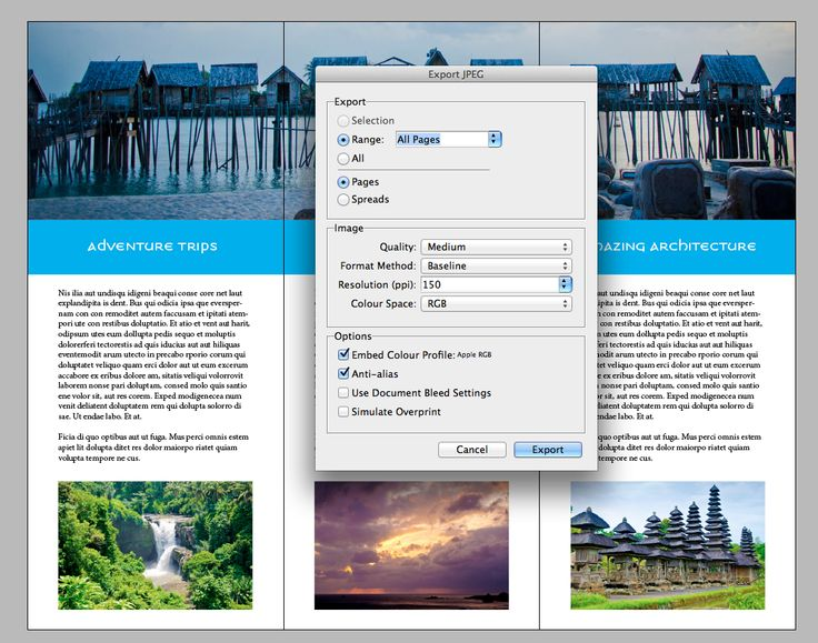 31 best f images on Pinterest Print templates, Brochures and - free medical brochure templates