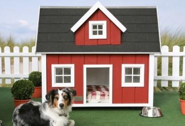 die besten 25 isolierte hundeh tten ideen auf pinterest hundeh tten baupl ne ein hundehaus. Black Bedroom Furniture Sets. Home Design Ideas