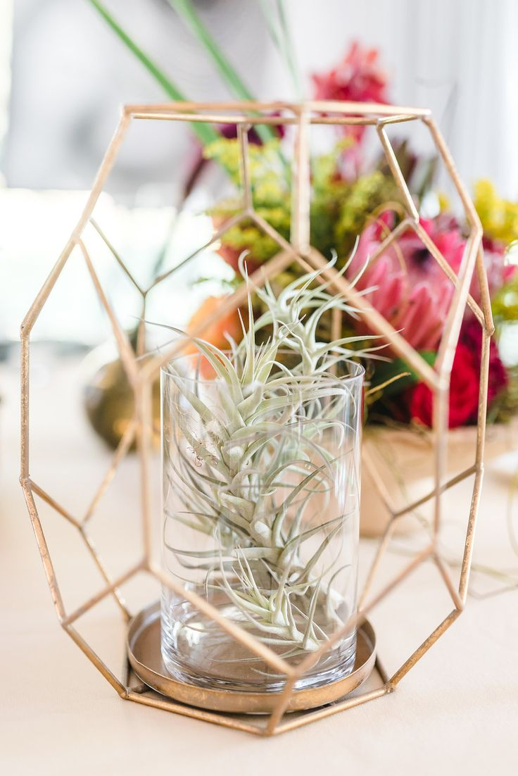 Rose Gold accessories were the inspiration for this event set up which included geometric shapes in its event design. The air plants add a nice 'spikey' touch!