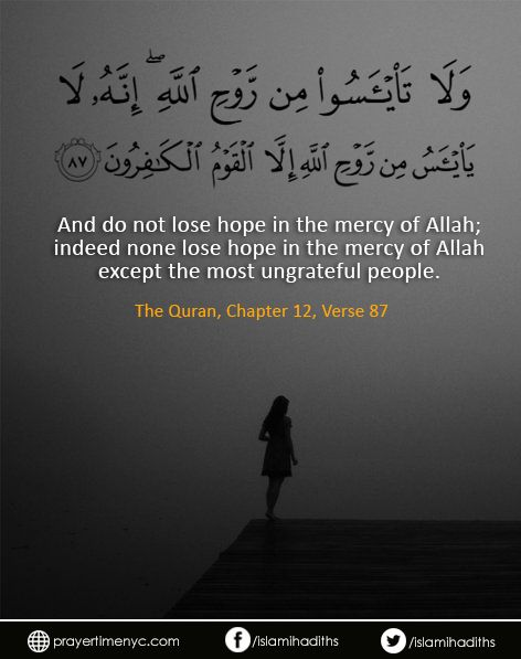 Quran Verses: And do not lose hope in the mercy of #Allah; indeed none lose #hope in the #mercy of Allah except the most ungrateful people. [12:87] #quran #quranlines #quranquote #dailyquran #islam #muslim #faith