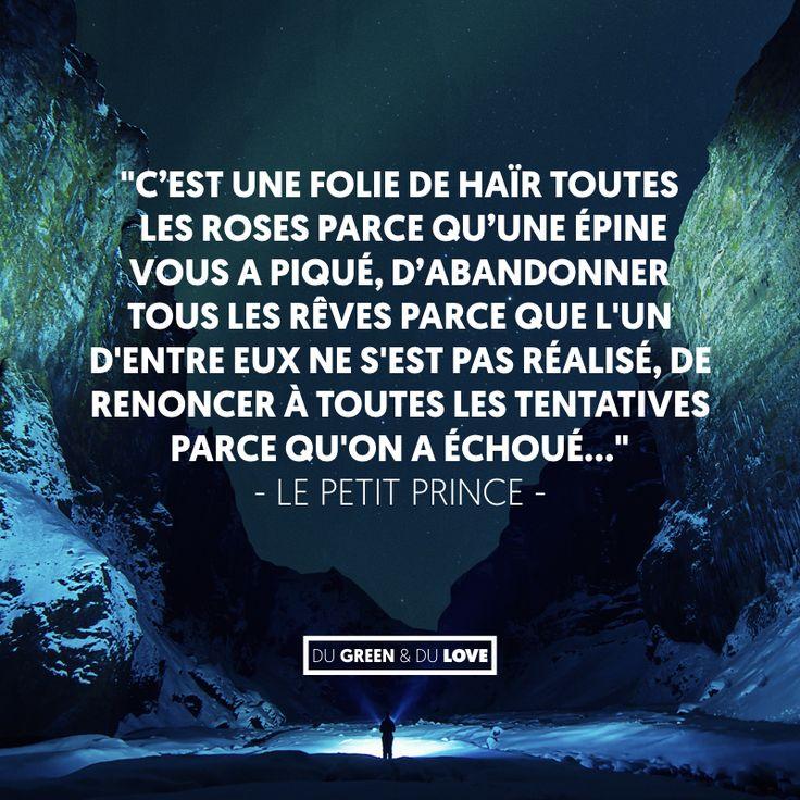Citation inspirante, c'est une folie... le petit prince