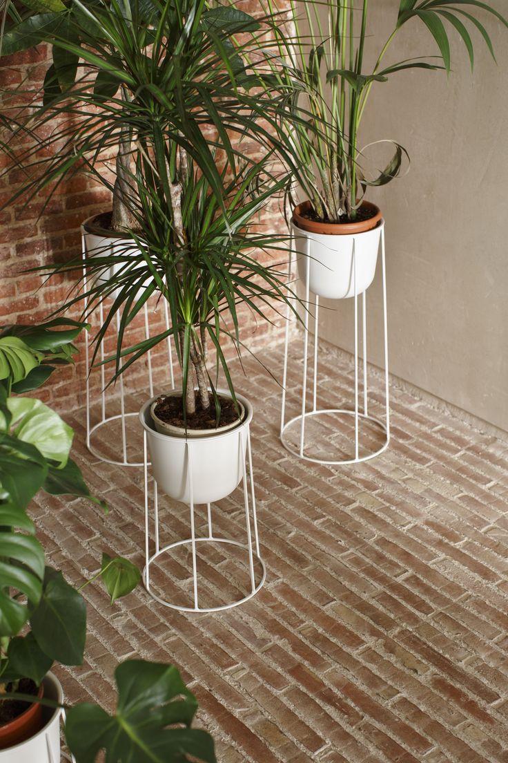 MENU Wire Pot x PlanteaStudio https://es.pinterest.com/planteaestudio/