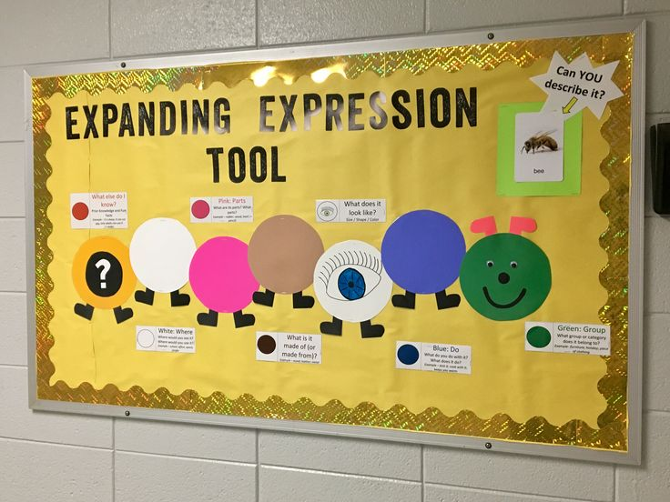 Expanding Expression Tool (EET) Bulletin Board for Speech Language Therapy Education! I post a picture in the upper right corner every week for student to practice as they walk by or wait for the next transition!