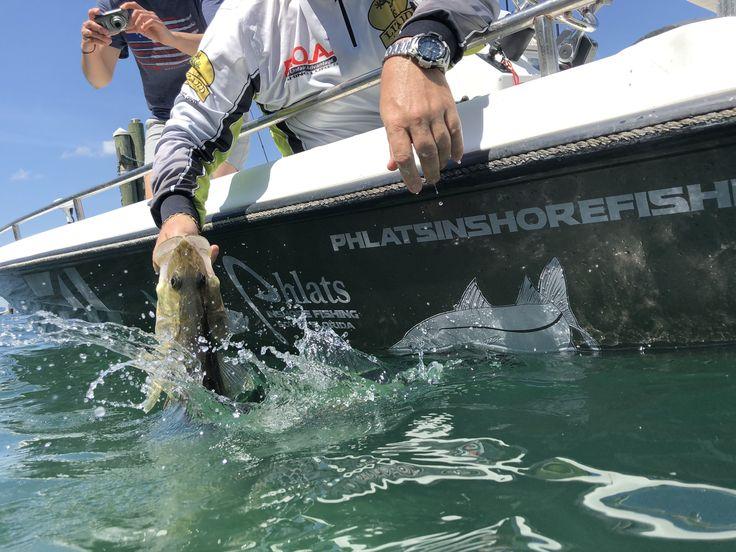 saltwater snook head fishing bowfishing