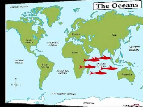 The Five Oceans Song for Kids (horrible voice) weird lyrics, but it probably helps.