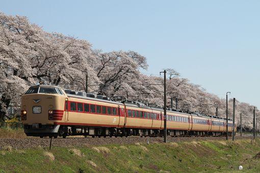 船岡周辺は1000本桜が満開であった。 4月12・13日の2日間、〈みやぎ・ふくしま花めぐり号〉が仙台~福島間で運転された。車輌は仙台車両センター所属の485系6輌(A1+A2編成)が使用された。この列車は4月19・20日も運転が予定されている。 / 東北本線 船岡─大河原 26.04.13 Huruhashi Yuusuke.jpg