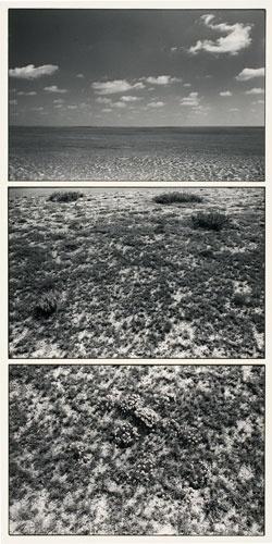 http://www.nyu.edu/greyart/exhibits/johnwood/webphotos/pictures/wood_001_028.jpg