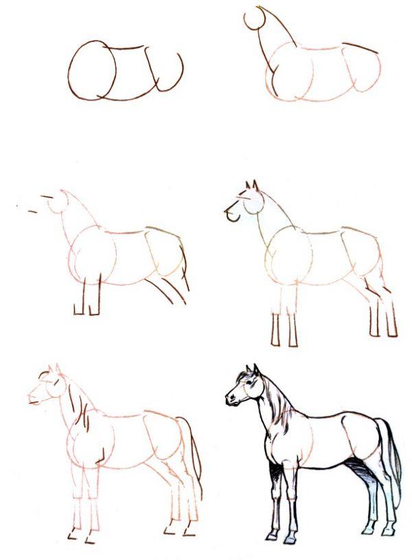 Les 25 meilleures id es de la cat gorie dessin cheval facile sur pinterest comment dessiner un - Dessins de chevaux facile ...