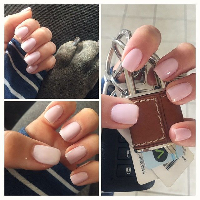 My natural nails with 1 layer CND cake pop shellac + 1 layer CND romantique shellac = my favorite opaque pink combo  Rowie wanted to take a paw picture too