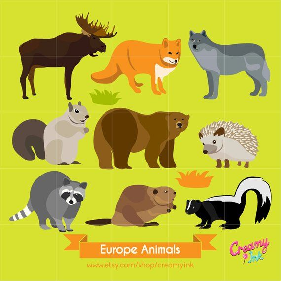 Pin By Lauren Snow On Party Animal Clipart Wildlife Animals Clip Art