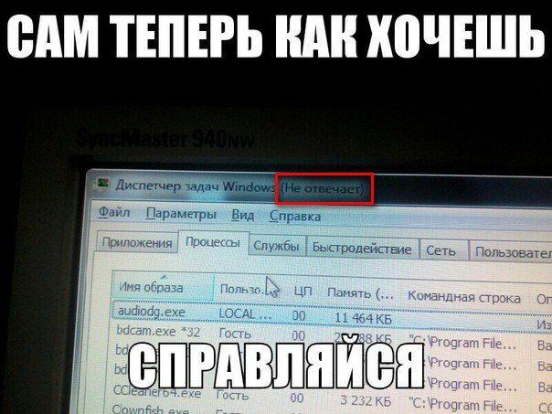 Windows иногда способна бросить в трудную минуту