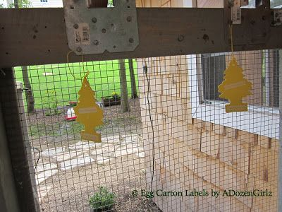 The Chicken Chick®: Got FLIES? Vanilla Scented Christmas Trees in the Chicken Coop