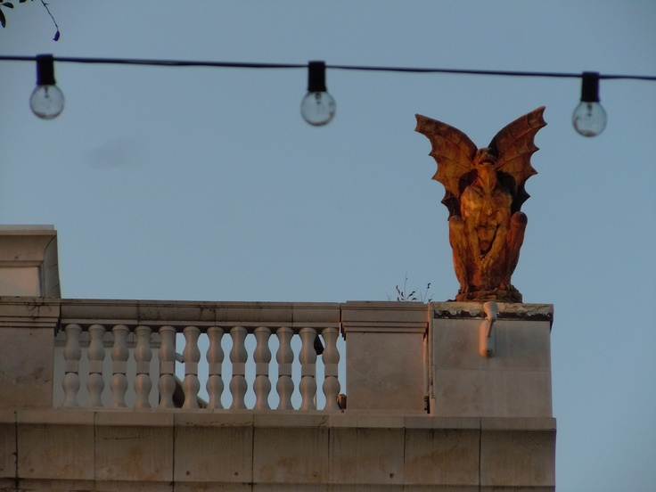 LUV these gargoyles atop on condo just off Hannibal Square in Winter Park, Florida.  VERY Paris, I thnk!  :-)