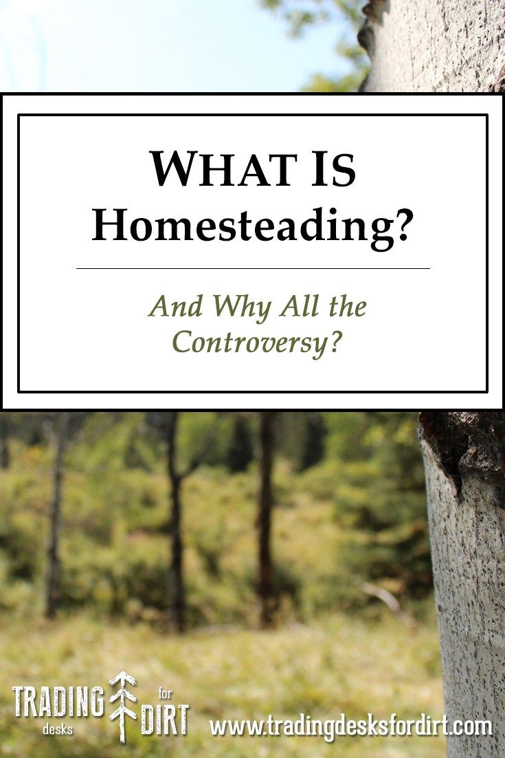 What Is Homesteading? And Why All the Controversy? #homestead #homesteading #selfsufficiency #alternativeliving #farm #hobbyfarm #tradingdesksfordirt