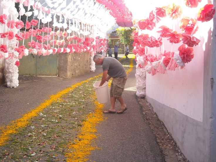 Colocação do tapete de flores na Rua da Senhora da Saúde, para passagem da procissão da padroeira da aldeia...