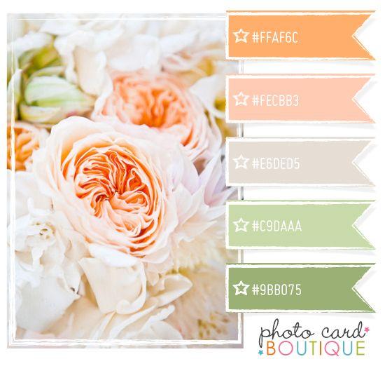Color Crush Palette · 4.26.2012    http://blog.photocardboutique.com/category/color-inspiration/