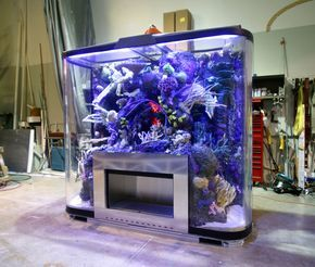 built in saltwater tank | ... Custom Drop-Off Reef Tank - Page 9 - Reef Central Online Community