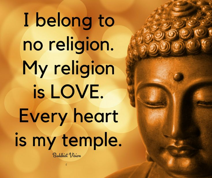 Buddha Family Quotes: Best 25+ Buddha Quotes Happiness Ideas On Pinterest