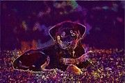 "New artwork for sale! - "" Rottweiler Dog Puppy Sweet  by PixBreak Art "" - http://ift.tt/2tSRMl1"