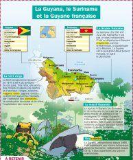 La Guyana, le Suriname et la Guyane française - Mon Quotidien, le seul site d'information quotidienne pour les 10-14 ans !